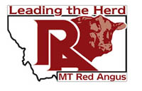Montana Red Angus Association MTRAA