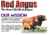 National Red Angus Association NRAA